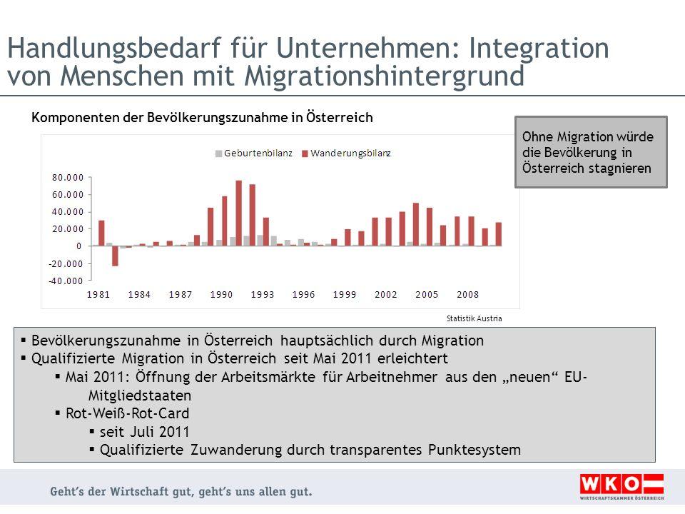 Handlungsbedarf für Unternehmen: Integration von Menschen mit Migrationshintergrund Komponenten der Bevölkerungszunahme in Österreich Statistik Austri