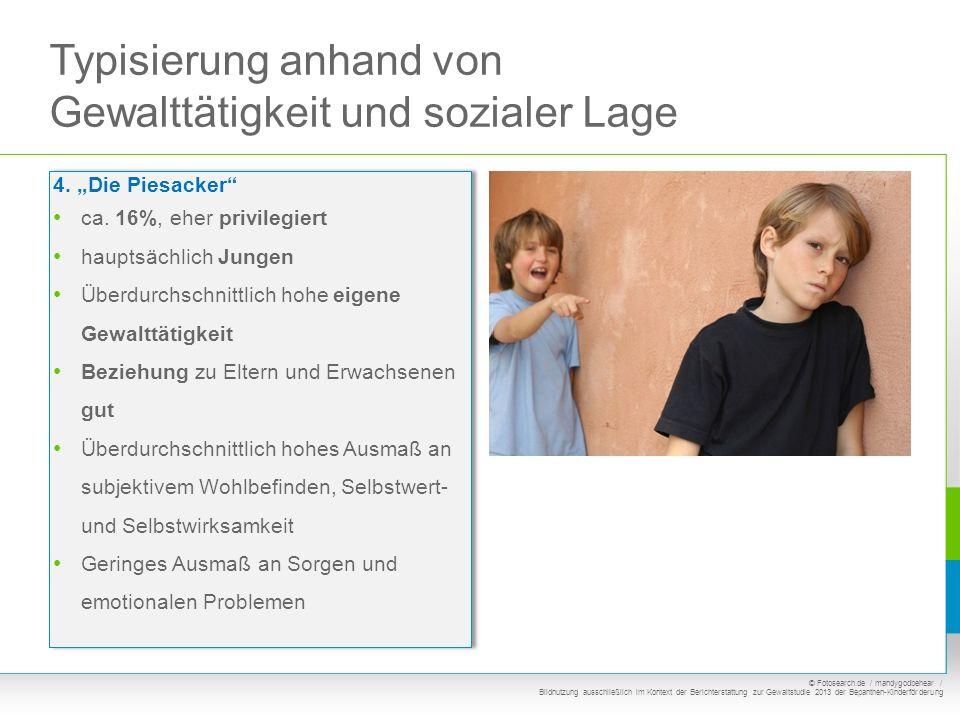 Typisierung anhand von Gewalttätigkeit und sozialer Lage 4. Die Piesacker ca. 16%, eher privilegiert hauptsächlich Jungen Überdurchschnittlich hohe ei