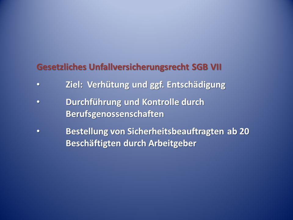 Gesetzliches Unfallversicherungsrecht SGB VII Ziel: Verhütung und ggf. Entschädigung Ziel: Verhütung und ggf. Entschädigung Durchführung und Kontrolle