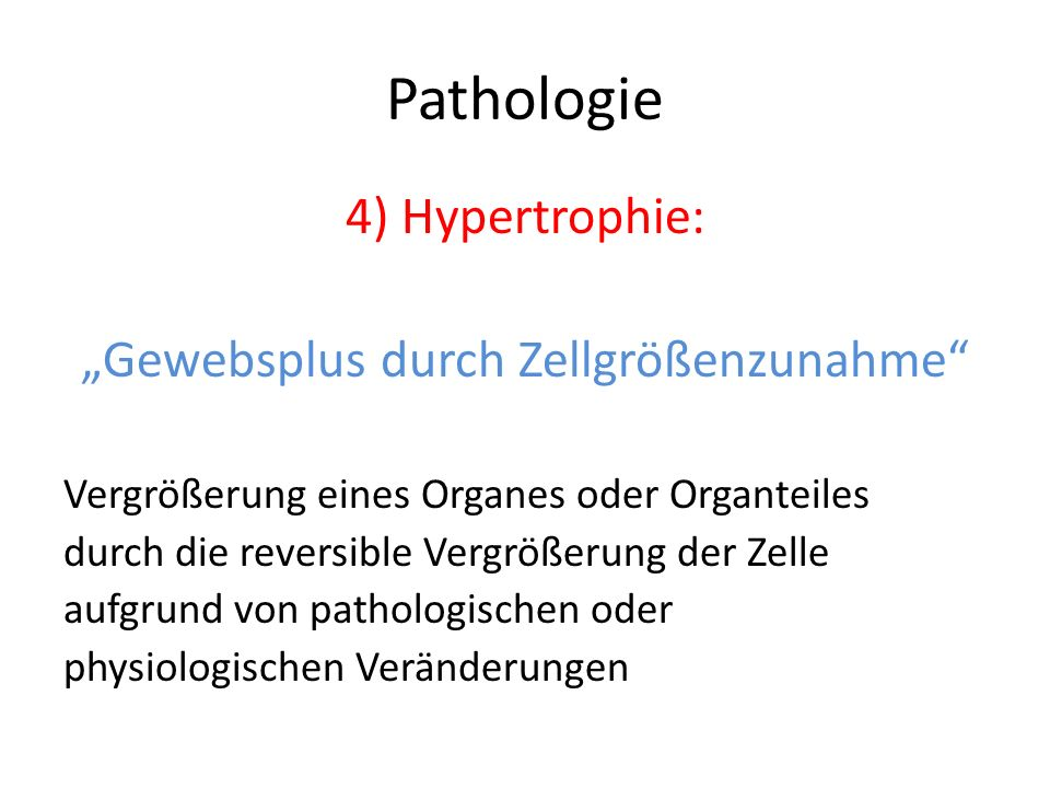 Pathologie 4) Hypertrophie: Gewebsplus durch Zellgrößenzunahme Vergrößerung eines Organes oder Organteiles durch die reversible Vergrößerung der Zelle