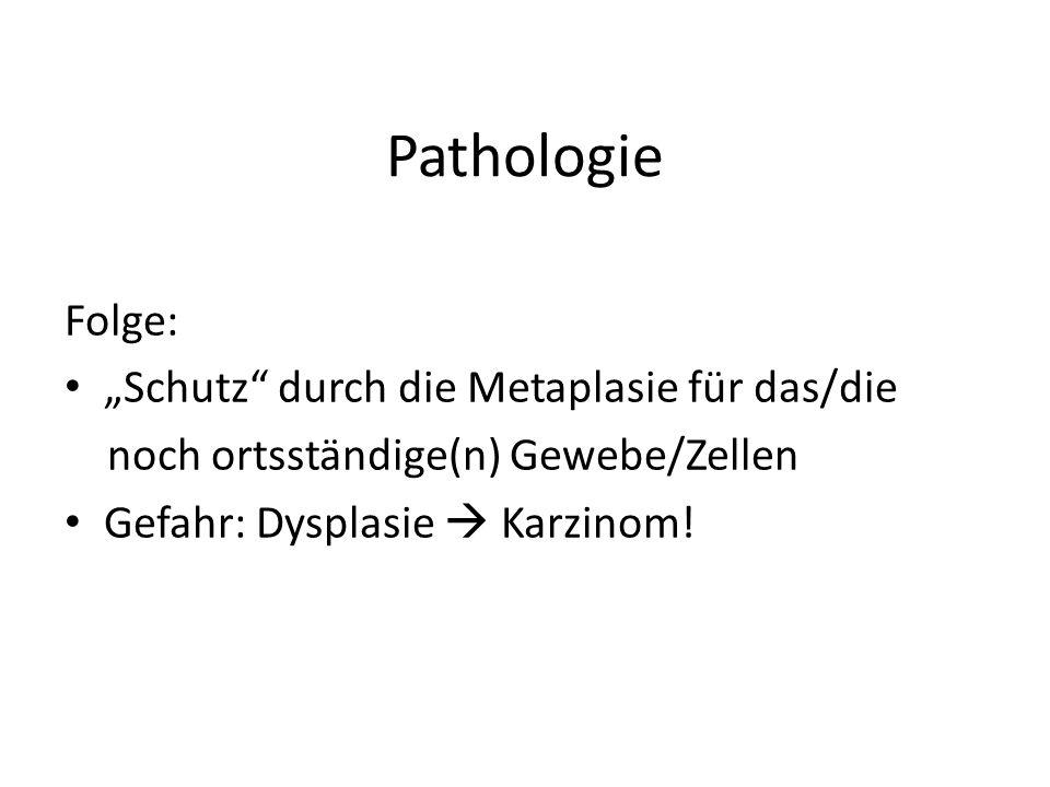 Pathologie Folge: Schutz durch die Metaplasie für das/die noch ortsständige(n) Gewebe/Zellen Gefahr: Dysplasie Karzinom!