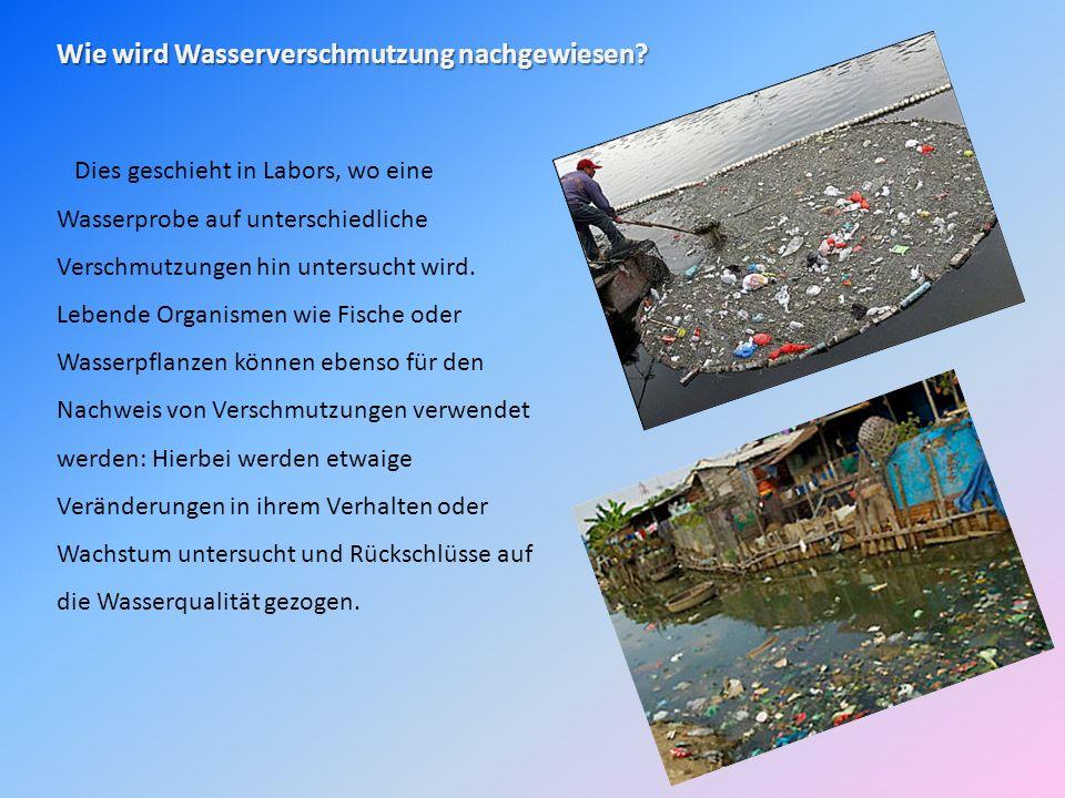 Wie wird Wasserverschmutzung nachgewiesen? Dies geschieht in Labors, wo eine Wasserprobe auf unterschiedliche Verschmutzungen hin untersucht wird. Leb