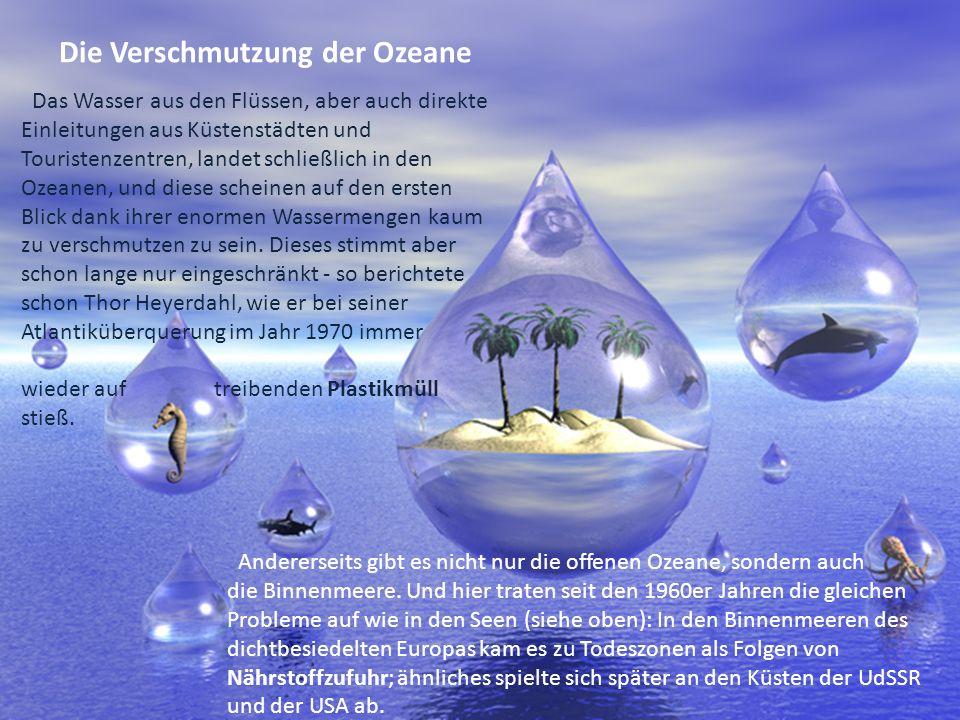 Bibliographie: http://www.oekosystem-erde.de/html/wasserverschmutzung.html http://www.hallo.ro/ http://www.gutefrage.net/frage/welche-folgen-hat-die- wasserverschmutzung