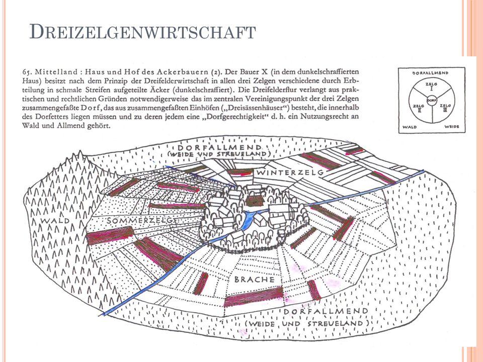 D REIZELGENWIRTSCHAFT