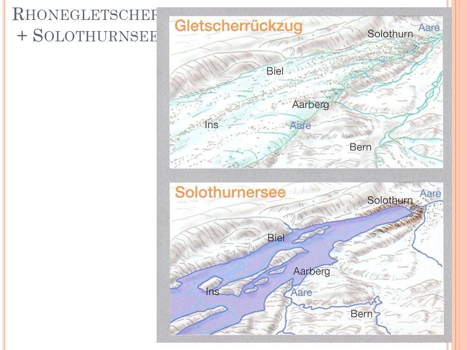 R HONEGLETSCHER + S OLOTHURNSEE