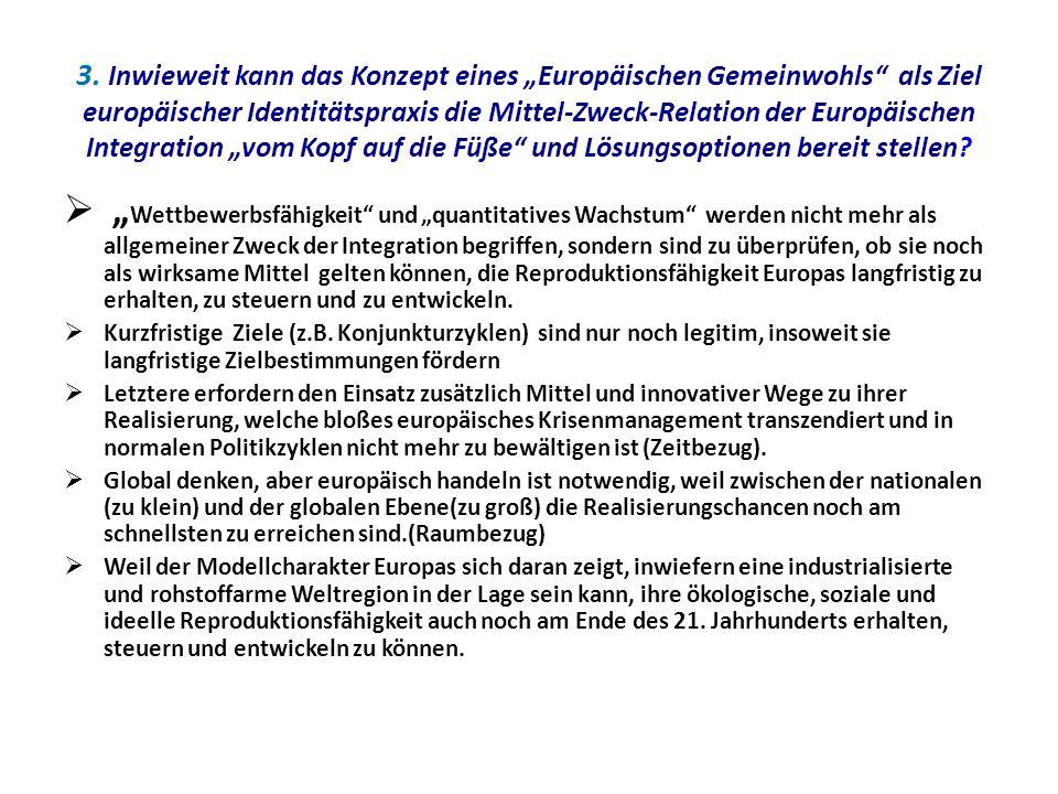 3. Inwieweit kann das Konzept eines Europäischen Gemeinwohls als Ziel europäischer Identitätspraxis die Mittel-Zweck-Relation der Europäischen Integra