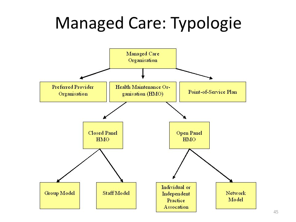Managed Care: Typologie 45