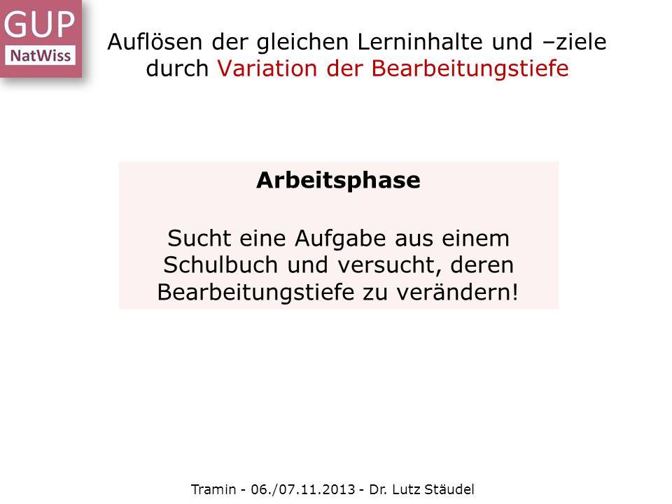 Auflösen der gleichen Lerninhalte und –ziele durch Variation der Bearbeitungstiefe Tramin - 06./07.11.2013 - Dr. Lutz Stäudel Arbeitsphase Sucht eine