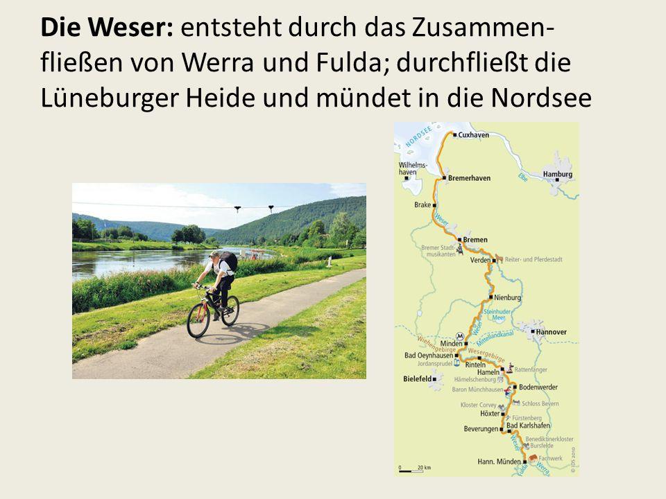 Die Weser: entsteht durch das Zusammen- fließen von Werra und Fulda; durchfließt die Lüneburger Heide und mündet in die Nordsee