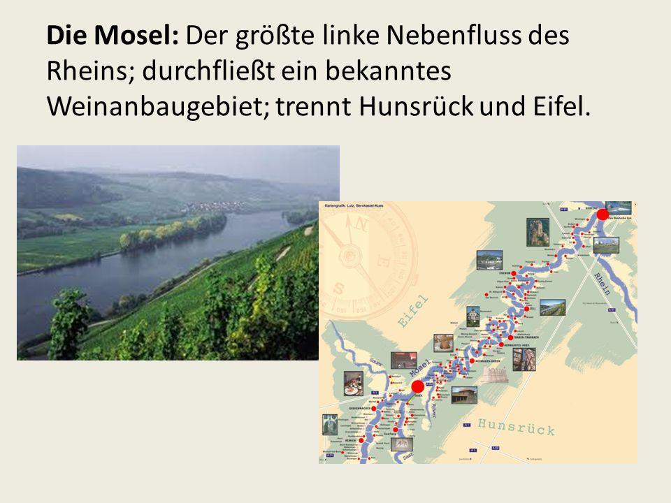 Die Mosel: Der größte linke Nebenfluss des Rheins; durchfließt ein bekanntes Weinanbaugebiet; trennt Hunsrück und Eifel.