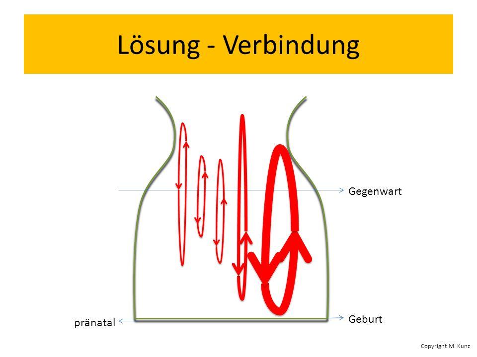 Lösung - Verbindung pränatal Geburt Gegenwart Copyright M. Kunz