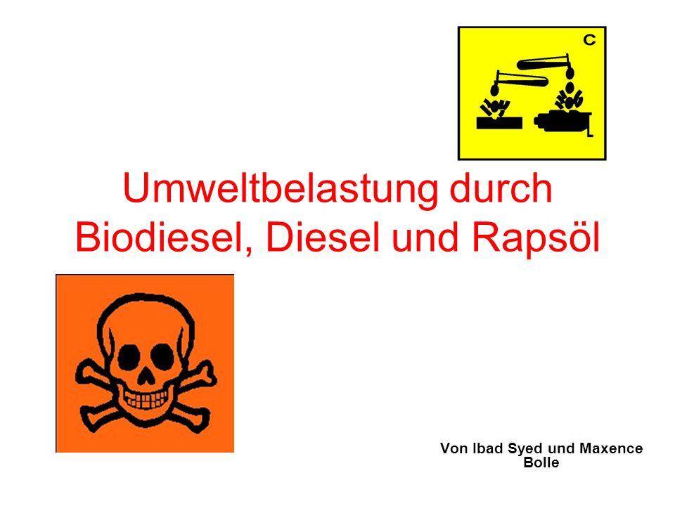 Inhaltsverzeichnis Vorstellung der Experimente/ Ergebnisse Herstellung von Rapsöl Herstellung von Biodiesel Herstellung von Diesel Umweltbelastung Diagramm: Vergleich Diesel- Biodiesel