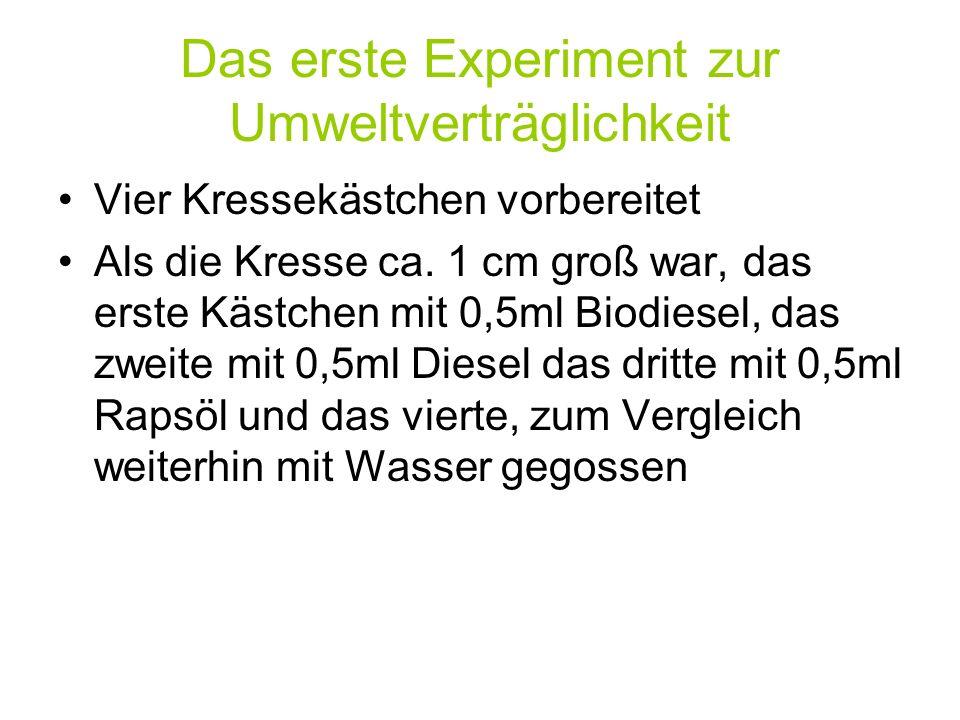 Das erste Experiment zur Umweltverträglichkeit Vier Kressekästchen vorbereitet Als die Kresse ca. 1 cm groß war, das erste Kästchen mit 0,5ml Biodiese