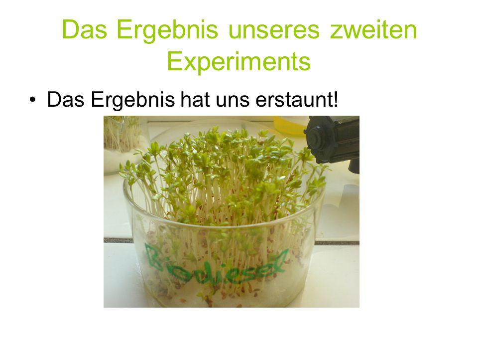 Das Ergebnis unseres zweiten Experiments Das Ergebnis hat uns erstaunt!