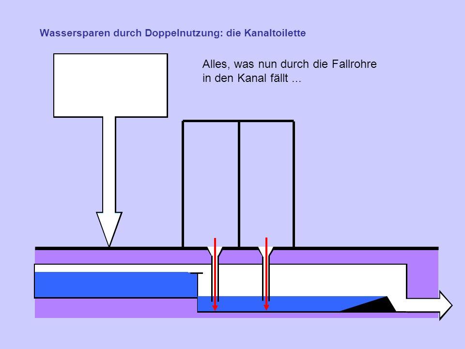 Wassersparen durch Doppelnutzung: die Kanaltoilette Alles, was nun durch die Fallrohre in den Kanal fällt...