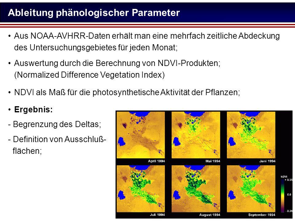Ableitung phänologischer Parameter Aus NOAA-AVHRR-Daten erhält man eine mehrfach zeitliche Abdeckung des Untersuchungsgebietes für jeden Monat; Auswer