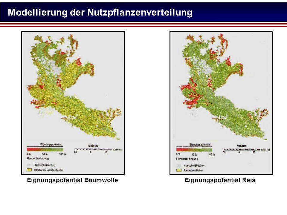 Modellierung der Nutzpflanzenverteilung Eignungspotential BaumwolleEignungspotential Reis
