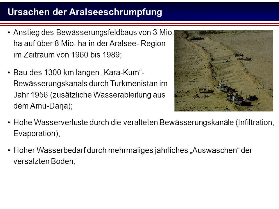 Ursachen der Aralseeschrumpfung Anstieg des Bewässerungsfeldbaus von 3 Mio. ha auf über 8 Mio. ha in der Aralsee- Region im Zeitraum von 1960 bis 1989