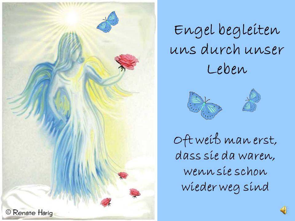 Engel begleiten uns durch unser Leben Oft weiß man erst, dass sie da waren, wenn sie schon wieder weg sind