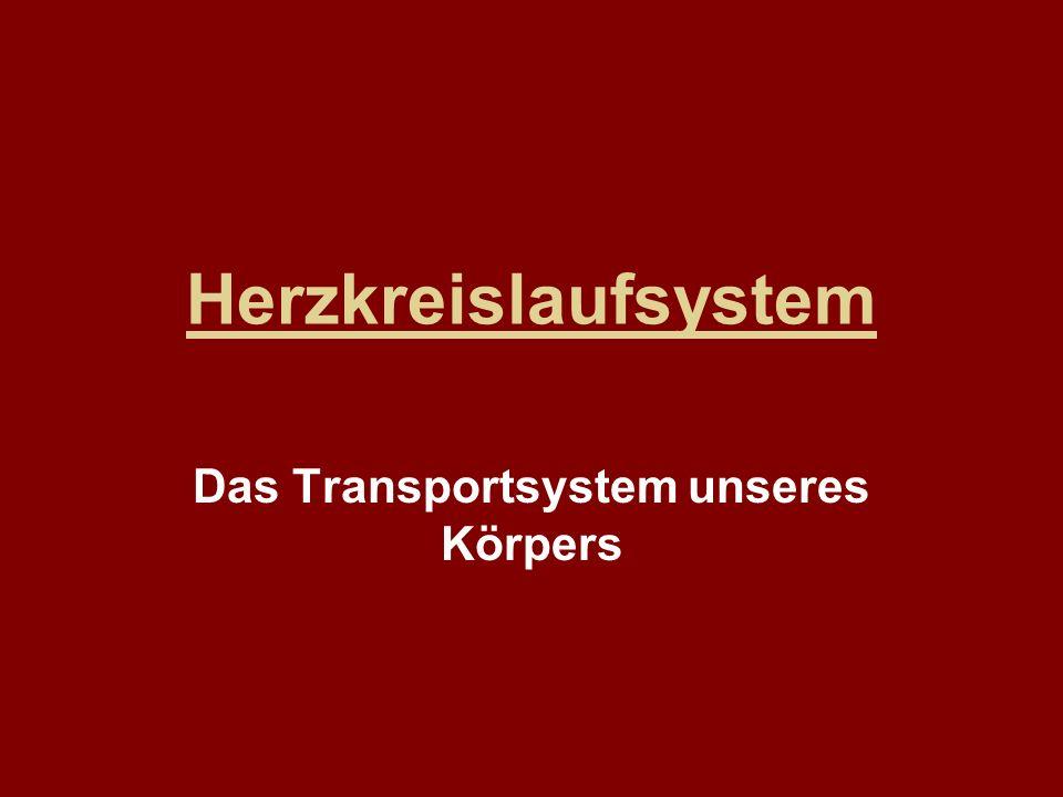 Herzkreislaufsystem Das Transportsystem unseres Körpers