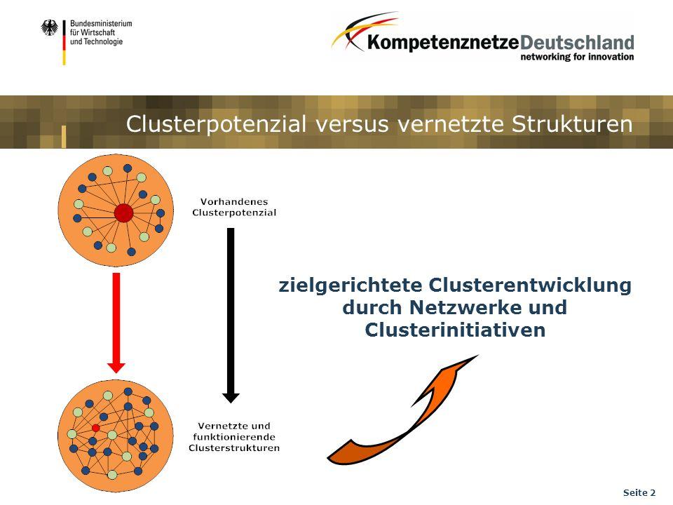 Seite 2 Clusterpotenzial versus vernetzte Strukturen zielgerichtete Clusterentwicklung durch Netzwerke und Clusterinitiativen