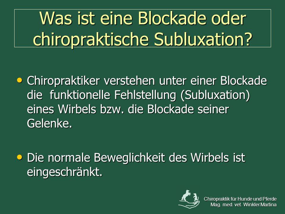 Was ist eine Blockade oder chiropraktische Subluxation? Chiropraktiker verstehen unter einer Blockade die funktionelle Fehlstellung (Subluxation) eine