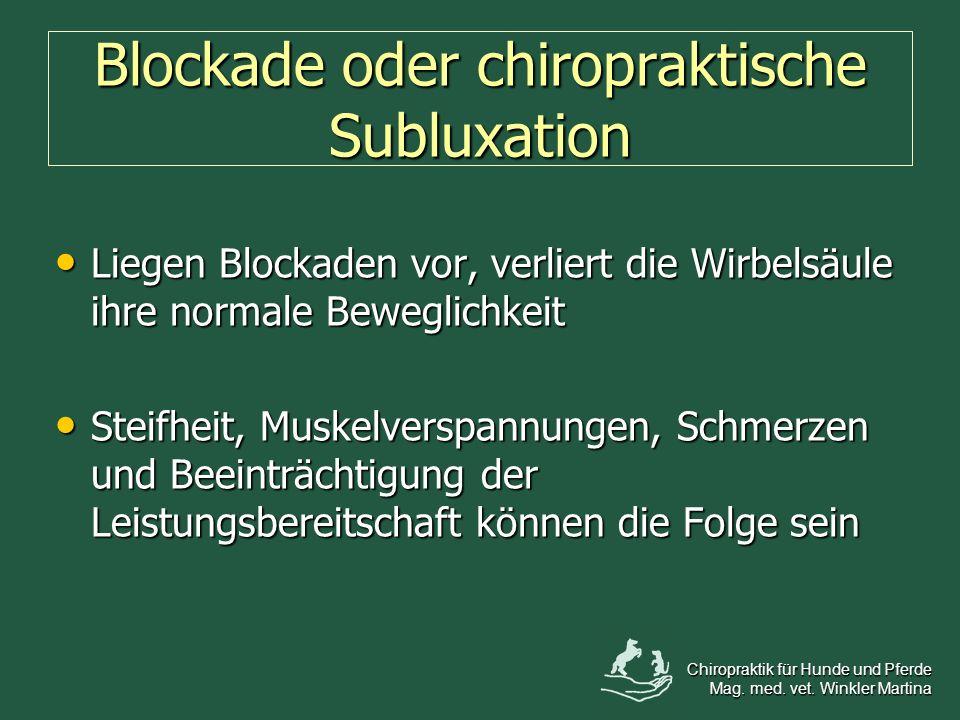 Blockade oder chiropraktische Subluxation Liegen Blockaden vor, verliert die Wirbelsäule ihre normale Beweglichkeit Liegen Blockaden vor, verliert die