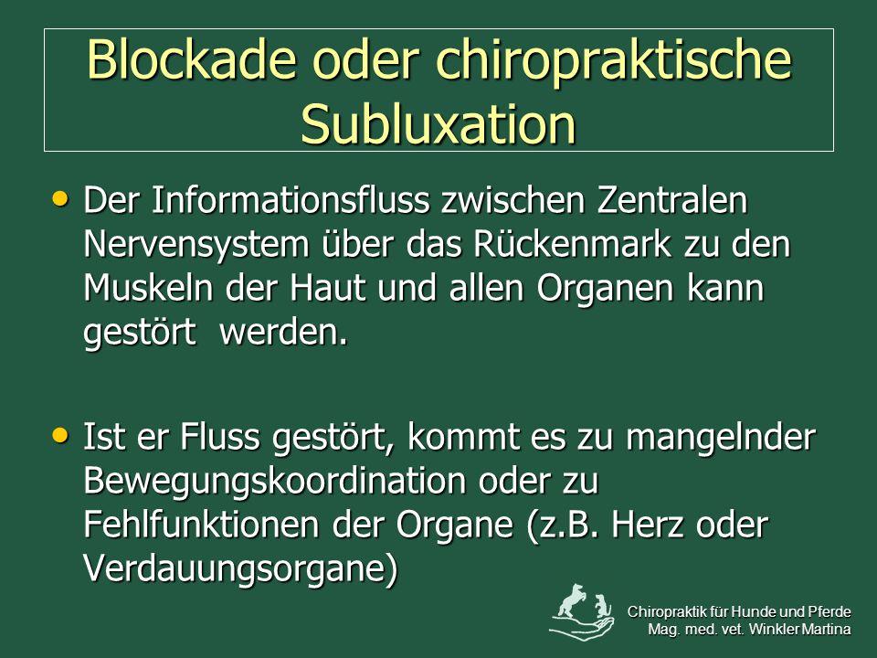 Blockade oder chiropraktische Subluxation Der Informationsfluss zwischen Zentralen Nervensystem über das Rückenmark zu den Muskeln der Haut und allen