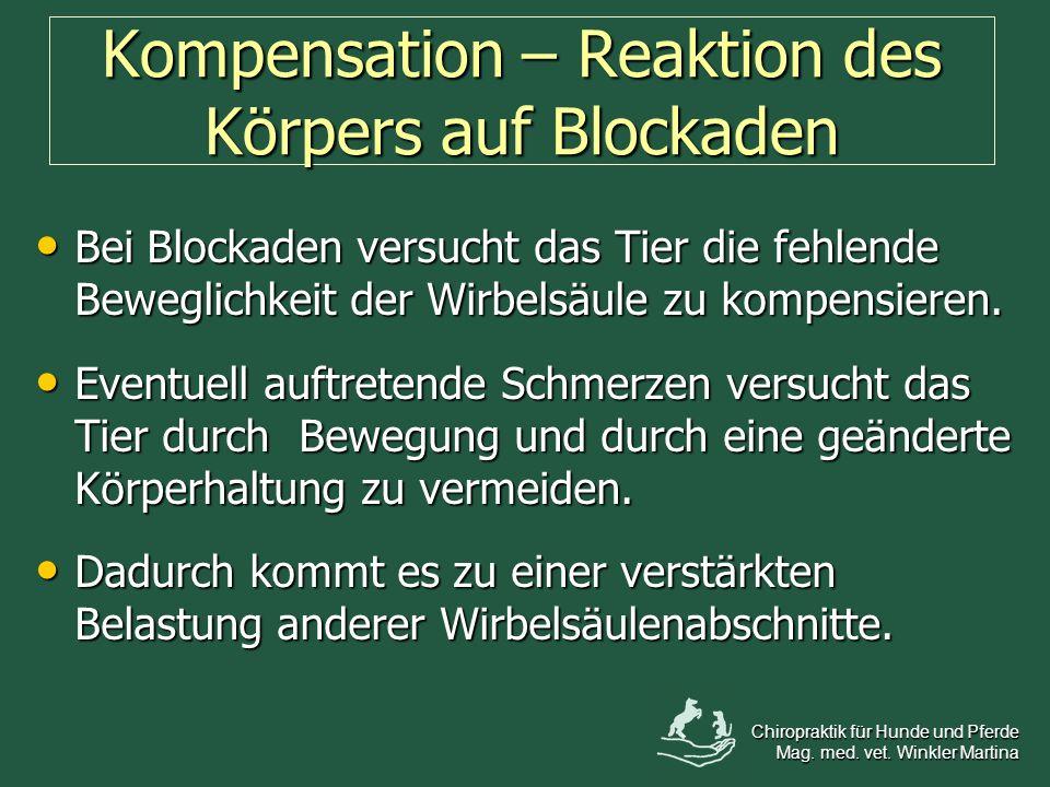 Kompensation – Reaktion des Körpers auf Blockaden Bei Blockaden versucht das Tier die fehlende Beweglichkeit der Wirbelsäule zu kompensieren. Bei Bloc