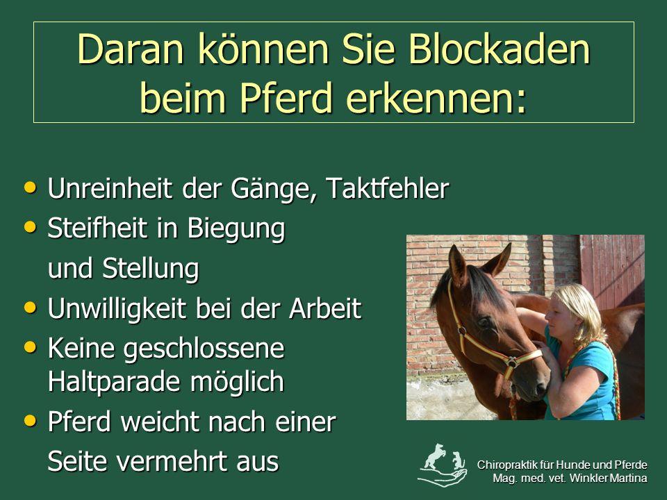 Daran können Sie Blockaden beim Pferd erkennen: Unreinheit der Gänge, Taktfehler Unreinheit der Gänge, Taktfehler Steifheit in Biegung Steifheit in Bi