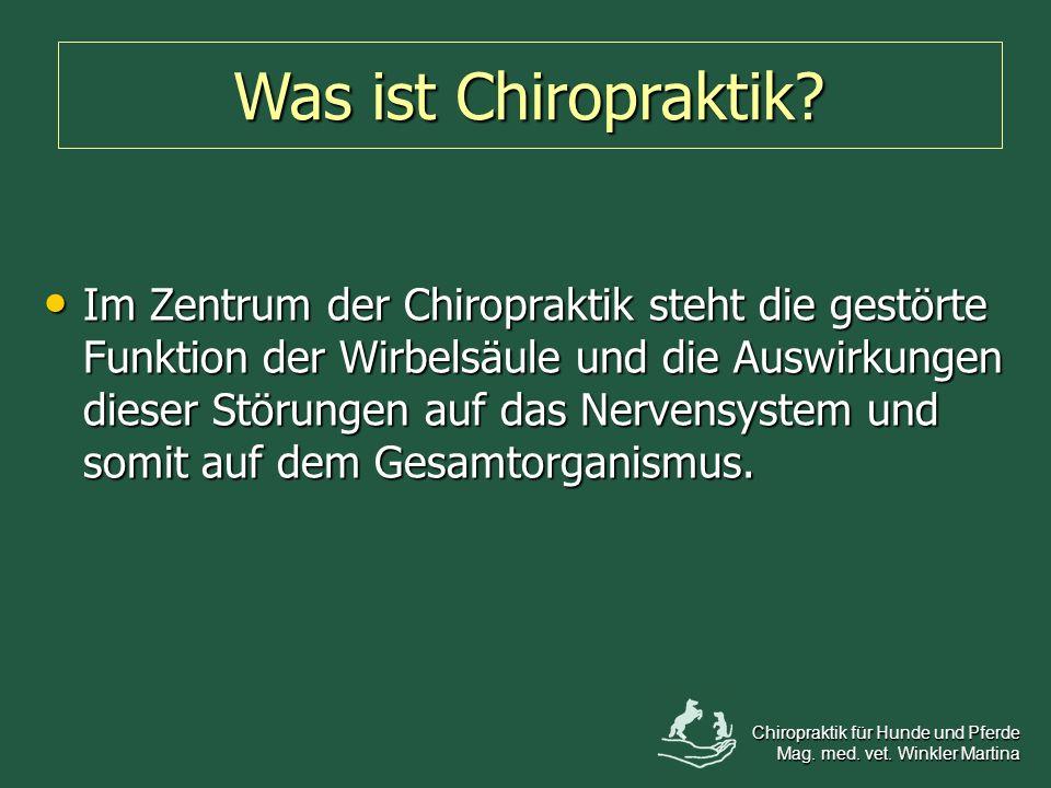 Im Zentrum der Chiropraktik steht die gestörte Funktion der Wirbelsäule und die Auswirkungen dieser Störungen auf das Nervensystem und somit auf dem G