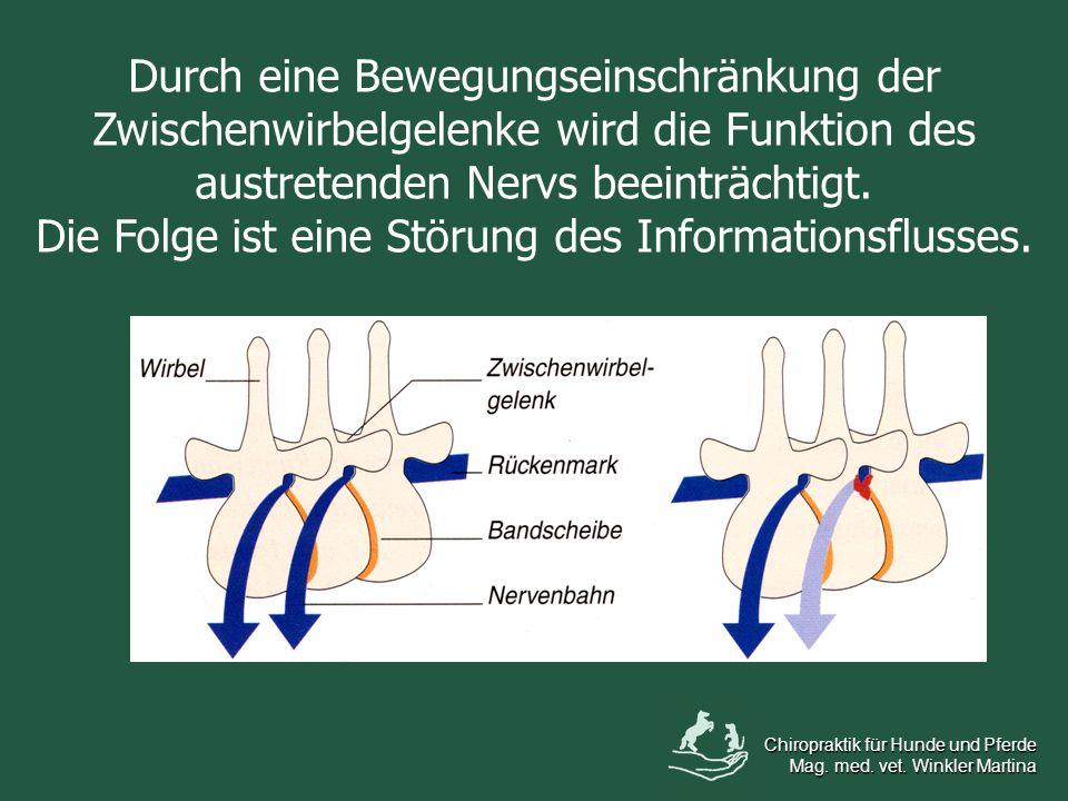 Durch eine Bewegungseinschränkung der Zwischenwirbelgelenke wird die Funktion des austretenden Nervs beeinträchtigt. Die Folge ist eine Störung des In