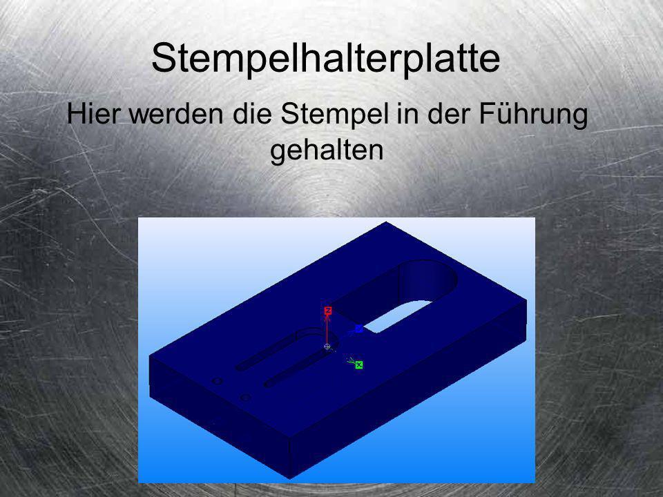 Abstreiferplatte Durch die Abstreiferplatte wird das Material vom Stempel abgestreift und der Stempel wird geführt