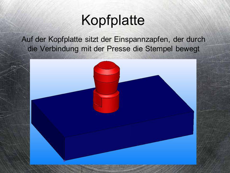 Kopfplatte Auf der Kopfplatte sitzt der Einspannzapfen, der durch die Verbindung mit der Presse die Stempel bewegt