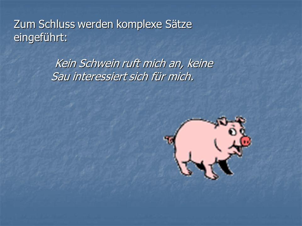 Zum Schluss werden komplexe Sätze eingeführt: Kein Schwein ruft mich an, keine Sau interessiert sich für mich. Kein Schwein ruft mich an, keine Sau in