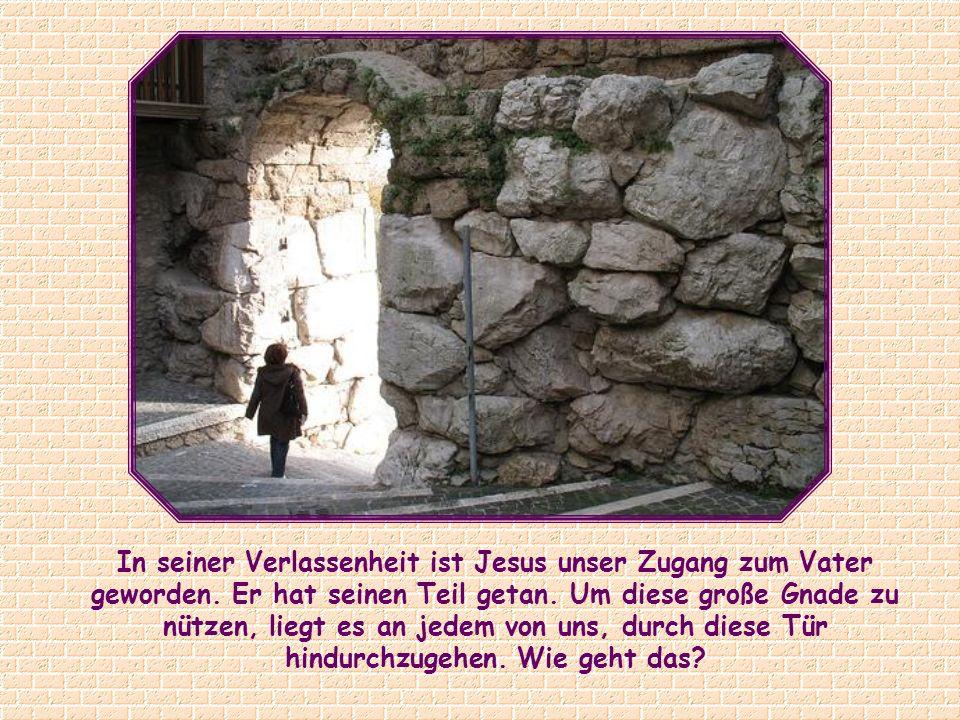 Ich bin die Tür; wer durch mich hineingeht, wird gerettet werden; er wird ein- und ausgehen und Weide finden.