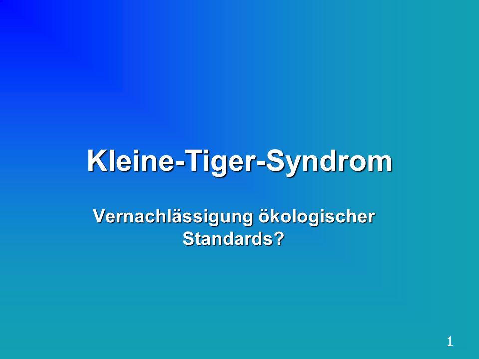 Kleine-Tiger-Syndrom Vernachlässigung ökologischer Standards? 1