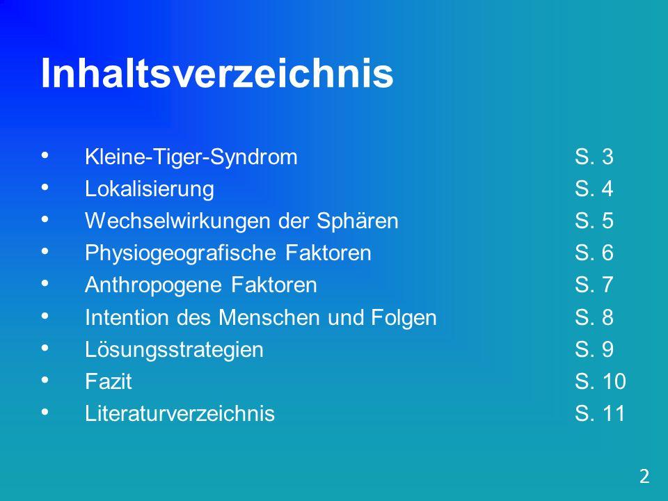 Inhaltsverzeichnis Kleine-Tiger-Syndrom S. 3 LokalisierungS. 4 Wechselwirkungen der Sphären S. 5 Physiogeografische FaktorenS. 6 Anthropogene Faktoren