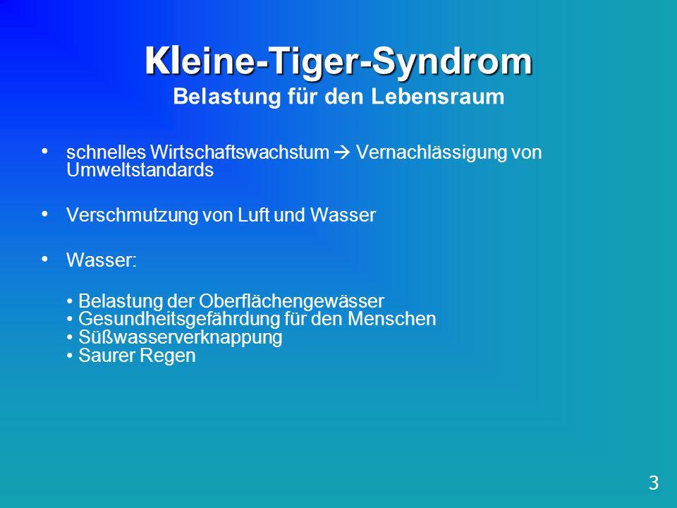 Kl eine-Tiger-Syndrom Kl eine-Tiger-Syndrom Belastung für den Lebensraum schnelles Wirtschaftswachstum Vernachlässigung von Umweltstandards Verschmutz