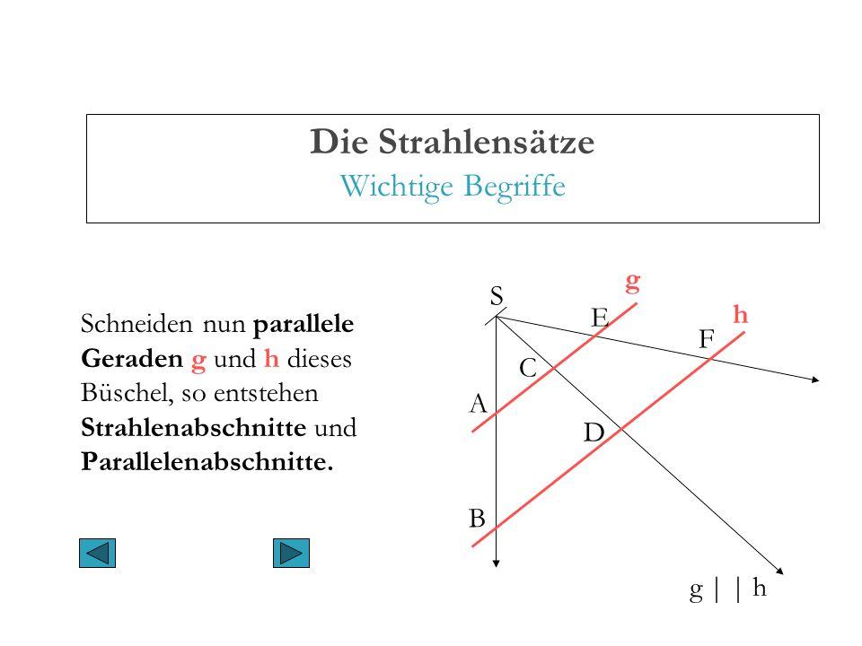 Die Strahlensätze Wichtige Begriffe Schneiden nun parallele Geraden g und h dieses Büschel, so entstehen Strahlenabschnitte und Parallelenabschnitte.
