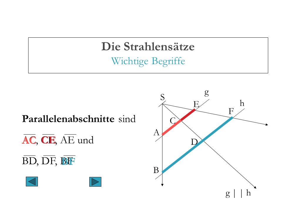 Die Strahlensätze Wichtige Begriffe A B C D E F g | | h g h S Parallelenabschnitte sind AC, CE, AE und BD, DF, BF AC CE BF
