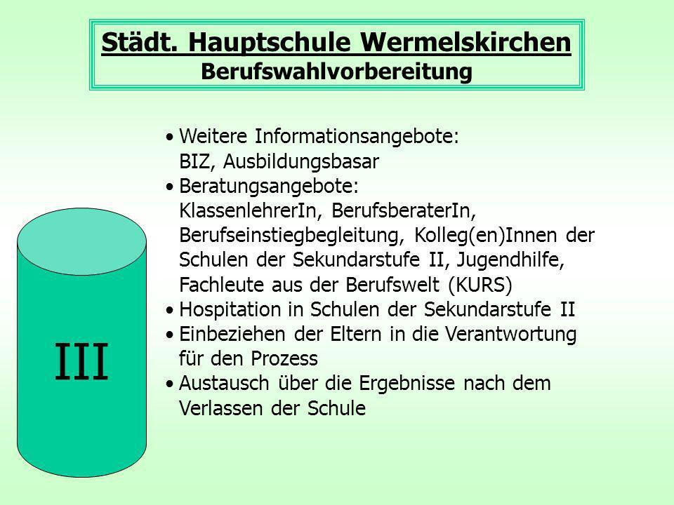 III Städt.Hauptschule Wermelskirchen Berufswahlvorbereitung Ergebnis (2012) ca.