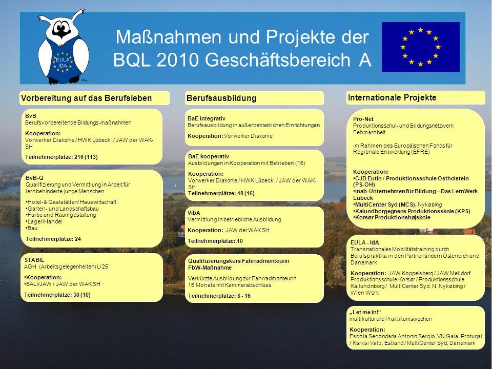 Maßnahmen und Projekte der BQL 2010 Geschäftsbereich A BvB-Q Qualifizierung und Vermittlung in Arbeit für lernbehinderte junge Menschen Hotel-& Gastst
