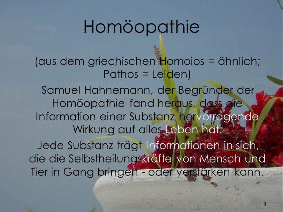 Die Grundlagen der Homöopathie Zur Herstellung homöopathischer Arzneimittel werden vorwiegend pflanzliche, tierische, mineralische und synthetische Ausgangsstoffe verwendet.