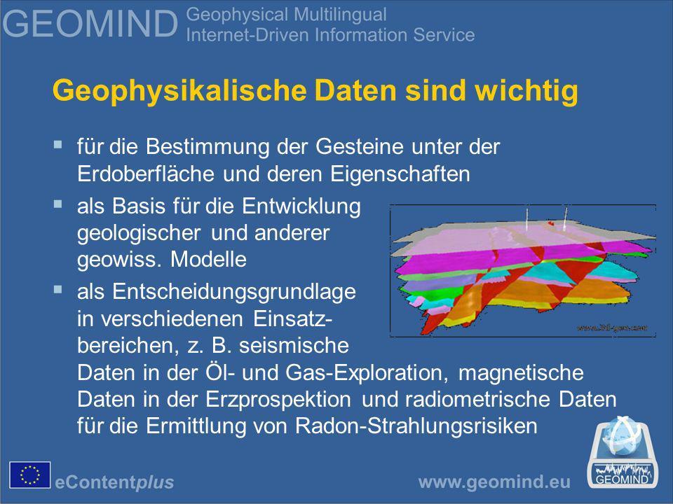 Geophysikalische Daten sind wichtig für die Bestimmung der Gesteine unter der Erdoberfläche und deren Eigenschaften als Basis für die Entwicklung geologischer und anderer geowiss.