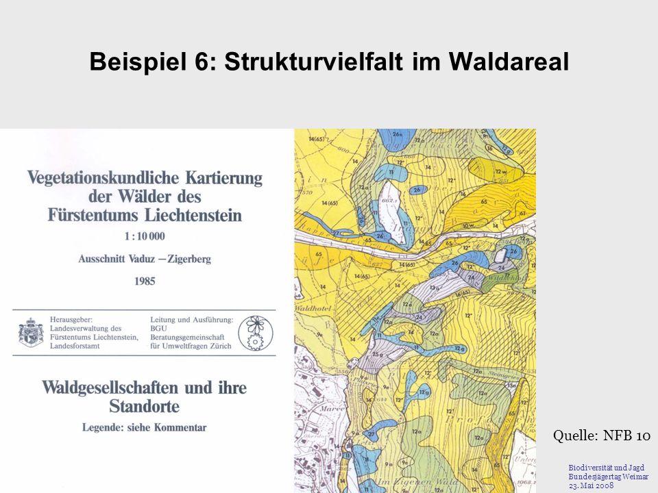 Beispiel 6: Strukturvielfalt im Waldareal Quelle: NFB 10 Biodiversität und Jagd Bundesjägertag Weimar 23. Mai 2008
