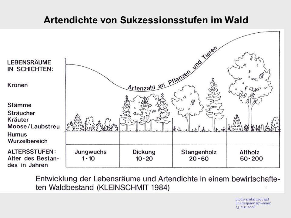 Artendichte von Sukzessionsstufen im Wald Biodiversität und Jagd Bundesjägertag Weimar 23. Mai 2008