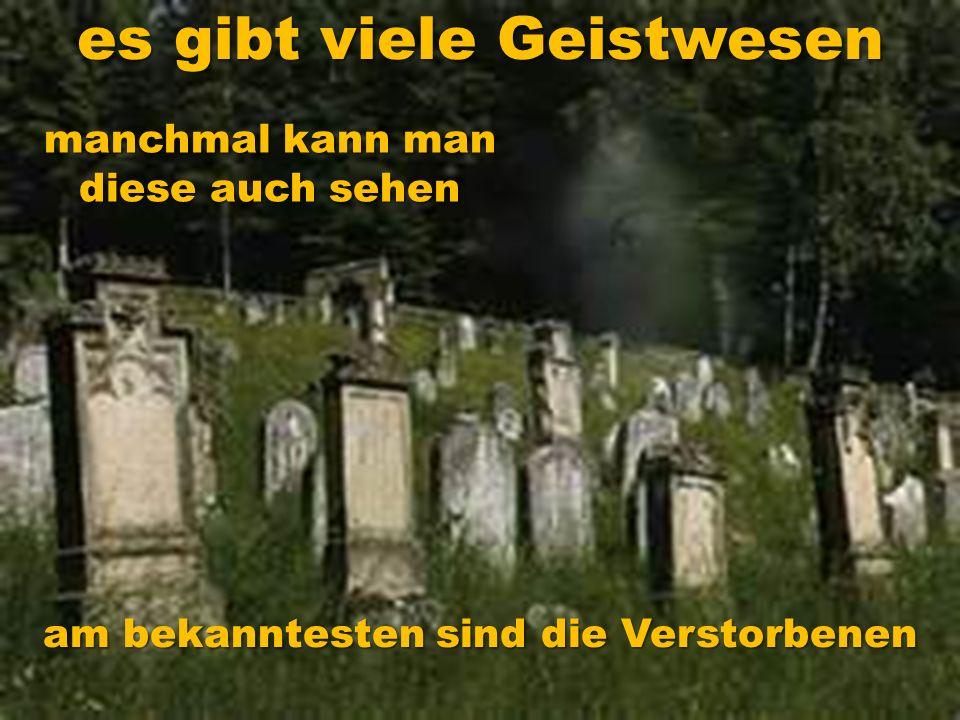 es gibt viele Geistwesen am bekanntesten sind die Verstorbenen manchmal kann man diese auch sehen