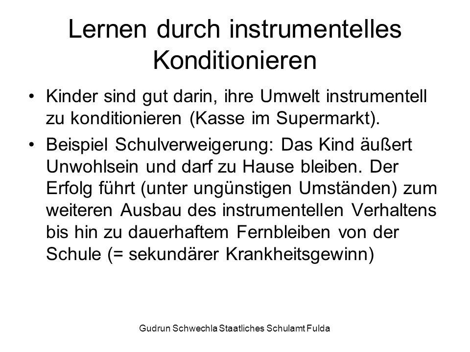Gudrun Schwechla Staatliches Schulamt Fulda Lernen durch instrumentelles Konditionieren Kinder sind gut darin, ihre Umwelt instrumentell zu konditionieren (Kasse im Supermarkt).