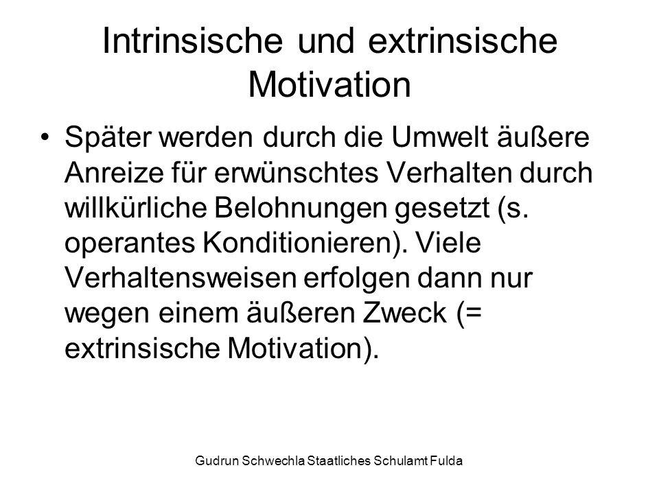 Gudrun Schwechla Staatliches Schulamt Fulda Intrinsische und extrinsische Motivation Später werden durch die Umwelt äußere Anreize für erwünschtes Verhalten durch willkürliche Belohnungen gesetzt (s.